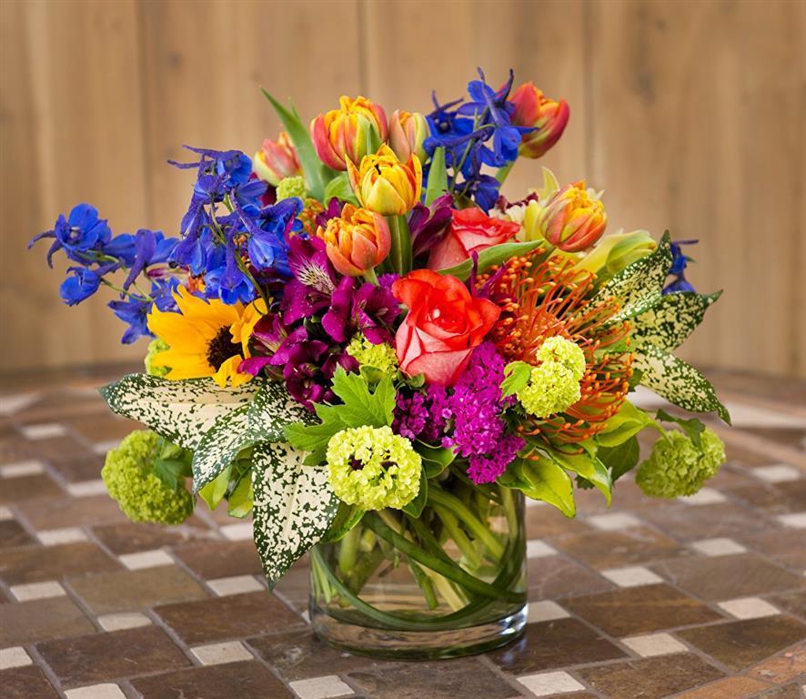 Hasanpaşa Teraryum Çiçek Hizmeti